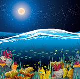 Seascape with underwater creatures and night sky. Nature  seascape with underwater creatures and night starry sky over surface Royalty Free Stock Photography