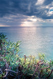 Seascape. View over the Ligurian gulf in Stock Photos