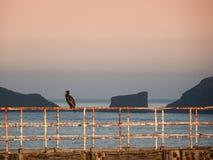 Seascape Whitby στο Γιορκσάιρ Αγγλία UK Στοκ Φωτογραφία