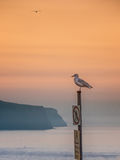 Seascape Whitby στο Γιορκσάιρ Αγγλία UK Στοκ εικόνα με δικαίωμα ελεύθερης χρήσης