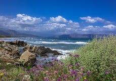 Seascape, widok morze ?r?dziemnomorskie, kwiatono?ni krzaki w przedpolu, g?ry i skalisty brzeg, zdjęcie stock