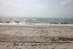 Seascape, wild beach, ocean waves Royalty Free Stock Photos
