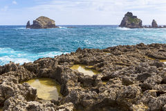 Seascape on a windy day at Pointe des Chateaux in Guadeloupe. Seascape on a windy day at cape Pointe des Chateaux in Guadeloupe Stock Image