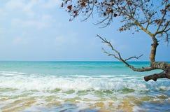 Seascape z dennymi fala, Obraz Stock