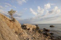 Seascape z skalistym brzeg Obrazy Stock