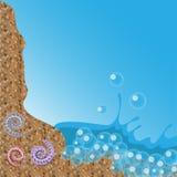 Seascape z skorupami Zdjęcie Royalty Free