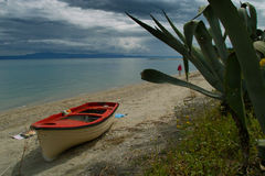 Seascapes. Seascape showing the fishing boat and a large cactus. Photographed in Greece Royalty Free Stock Photo