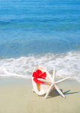 Seashel with hibiscus and starfish Royalty Free Stock Photography