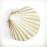 Seashell, значок вектора Стоковое Изображение