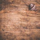 Seashell на старой деревянной поверхности Стоковые Изображения RF