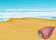 Seashell на seashore иллюстрация вектора