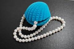 seashell перлы Стоковое фото RF