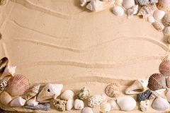 seashell рамки пляжа Стоковые Фотографии RF