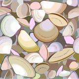 Seashell vektor abbildung