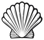 Seashell Royalty Free Stock Photography