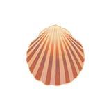 Seashell. Image libre de droits