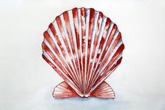 Seashell akwarela Zdjęcia Stock