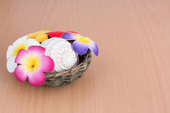 Seashell with artificial flower Royalty Free Stock Photography