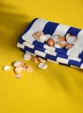 Seashell auf dem Farbentuch Lizenzfreies Stockfoto