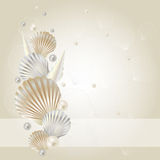 Seashell background. Abstract background with shells and pearls Royalty Free Stock Image