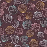 Seashell background. Abstract seamless pattern. Royalty Free Stock Image