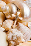 Seashell Background with Cross Stock Images