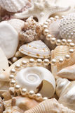 Seashell background with pearls Royalty Free Stock Photos