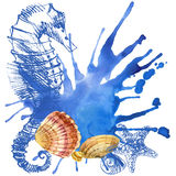 Seashell background stock illustration
