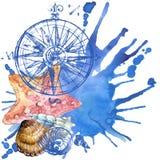 Seashell background Royalty Free Stock Image