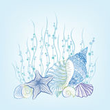 SeaShell background Summer Holiday Concept. Underwater Background Stock Images