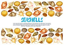 Seashell banner with marine mollusc shell border. Seashell of marine mollusc banner with border of clam, snail, chiton and tusk shell. Scallop, cockle and turret stock illustration