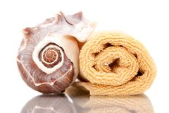 Seashell and bath towels Royalty Free Stock Photography