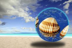 Seashell on the beach. Seashell inside the crystal ball on surreal beach Stock Images