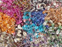 Seashell beads texture Stock Photography