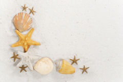 Seashell Border royalty free stock image