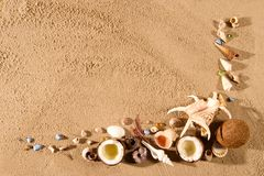 Seashell Border. Stock Photography