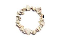 Seashell bracelet Royalty Free Stock Photo