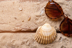 Seashell and brown sunglasses. Woman's sunglasses on sand. Seashore is waiting for you. Find warm and cozy place Royalty Free Stock Photo
