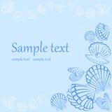 Seashell card. Vector Seashell Illustration. Seashell card Stock Image