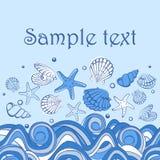 Seashell card. Vector Seashell Illustration. Seashell card Royalty Free Stock Image