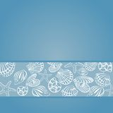 Seashell card. Vector Seashell Illustration. Seashell card Royalty Free Stock Photo