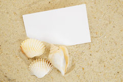 Seashell and card on sand Stock Photo