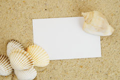 Seashell and card on sand Stock Photography