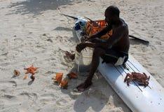 Seashell catcher Stock Photos