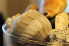 Seashell, Clams Oysters Mussels And Scallops royalty free stock photography