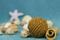Seashell with a coil of rope and twisted pieces royalty free stock photography