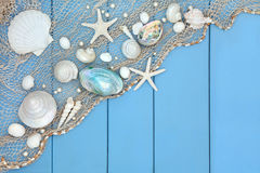 Seashell Collage Royalty Free Stock Images
