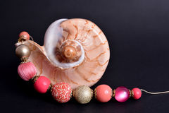 Seashell and coloured beads Stock Photos