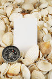 Seashell with compass and card Royalty Free Stock Photography