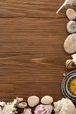Seashell and compass on wood Stock Photography